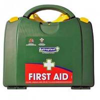 Green Box HSA Travel Person First Aid Kit (Incl Eye Eash &Burns items) Up to 5 Person